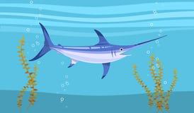 水下的箭鱼 免版税库存图片