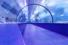 水下的隧道 免版税库存照片