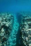 水下的风景自然沟槽到礁石里 免版税图库摄影