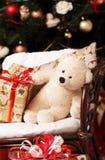下礼物由在头的一根冷杉木有熊的 免版税库存照片