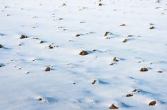 下耕地雪 库存图片