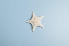 水下背景蓝色节假日寿命海洋海星的主题 库存照片