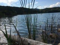 下落登录湖 免版税库存图片