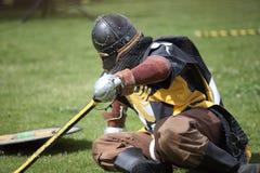 下落的凯尔特骑士 免版税库存照片