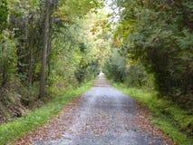 下落的叶子土气道路 免版税库存照片