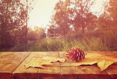 下落的叶子秋天背景在木桌和森林backgrond的与透镜火光和日落 图库摄影