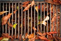下落的叶子都市场面极端特写镜头细节 秋天季节概念充分的框架背景 秋天季节性宏观摄影 库存图片