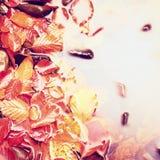 下落的山毛榉leves和石头在山河中水,第一片五颜六色的叶子吼叫镜子水平面 免版税库存照片