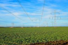 下落的电定向塔 未使用的传输或力量塔被采取在近的核电站下由于反应器的钝化 免版税库存图片