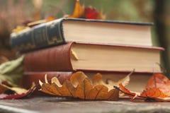 下落的秋叶和书 免版税库存照片