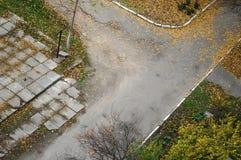 下落的秋叶盖的老围场路 免版税库存图片
