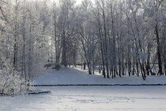 下落的雪、结冰的池塘和树的风景看法 33c 1月横向俄国温度ural冬天 免版税库存图片