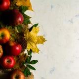 下落的黄色叶子和成熟红色苹果秋天温暖的背景  文本或照片的框架 可适用为文章 免版税库存图片