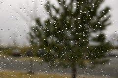 下落雨挡风玻璃 免版税库存照片