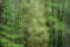 下落雨视窗 库存照片