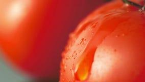 水水滴下落从成熟蕃茄上的 股票录像