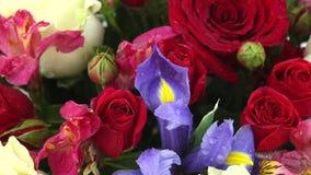 下跌在玫瑰、虹膜和德国锥脚形酒杯美丽的花束的水滴  股票视频