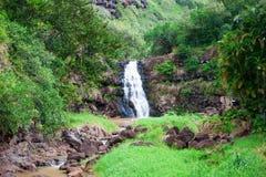 下跌夏威夷奥阿胡岛waimea 图库摄影