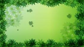 下跌的秋天绿色留下录影行动图表动画背景圈HD 向量例证