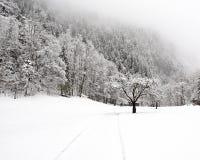 下跌truemmelbach冬天 免版税图库摄影
