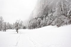 下跌truemmelbach冬天 库存照片