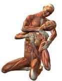 下跪的人肌肉妇女 库存照片