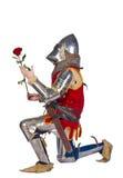 下跪的骑士 库存图片