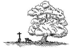 下长凳结构树 库存照片