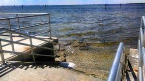 下降入海湾的台阶 图库摄影