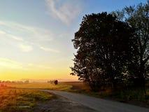 下降时间,秋天早晨 免版税库存图片