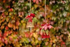 下降时间 秋天栗子装饰葡萄10月石榴木头 以lanter的形式烛台 免版税图库摄影