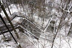 下降谷的长的螺旋式楼梯通过冬天森林 库存图片