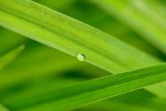 下雨下落 免版税库存照片