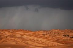 下雨在沙漠 库存图片