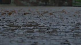 下雨在泥泞的路面 影视素材