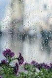 下雨在湿窗口和街道紫罗兰色花的下落后边,迷离城市bokeh 多雨天气,季节的概念,现代 库存图片