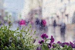 下雨在湿窗口和街道紫色花的下落后边,被弄脏的人民,城市轻的bokeh 多雨天气的概念 免版税库存图片