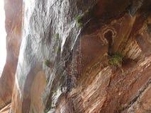 下雨在红色岩石的瀑布 免版税图库摄影