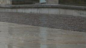下雨在路面的下落 股票视频