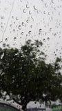 下雨天在南加州 免版税库存照片