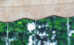 下雨有模糊的绿色树背景 库存图片