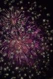下雨火-烟花节日在日本 免版税库存图片