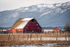 下雪在一个老红色谷仓的屋顶 免版税库存图片