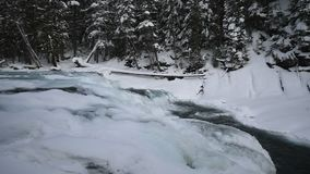 下雪在冬天的冰川国家公园 股票视频