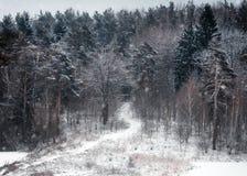 下雪在圣诞节冬天在村庄 免版税库存照片