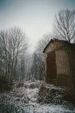 下雪在森林里 免版税库存图片
