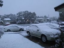 下雪在科珀斯克里斯提tx 免版税库存照片