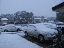 下雪在科珀斯克里斯提tx 库存照片