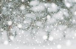 下雪或降雪 库存图片