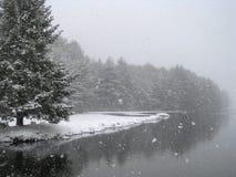 下雪由湖 库存图片